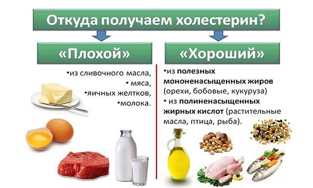Продукты с полезным и вредным холестерином