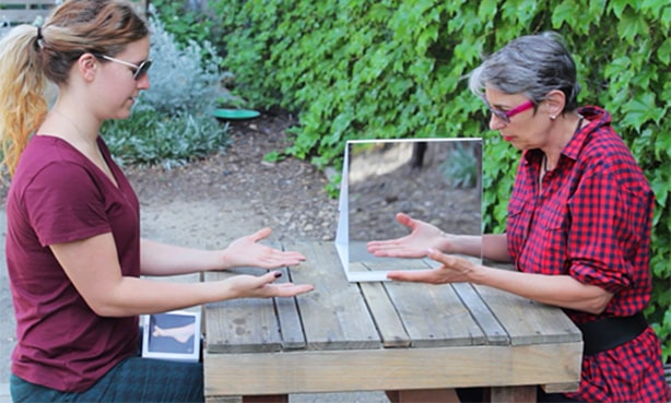 Разрабатывание парализованной руки в зеркальной призме