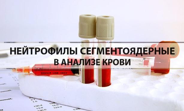 Нейтрофилы сегментоядерные в анализе крови