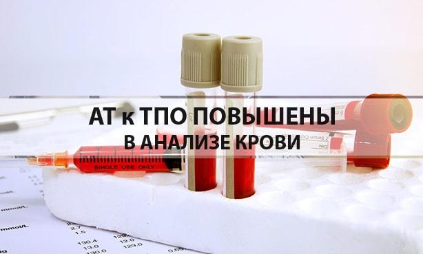 АТ к ТПО в анализе крови